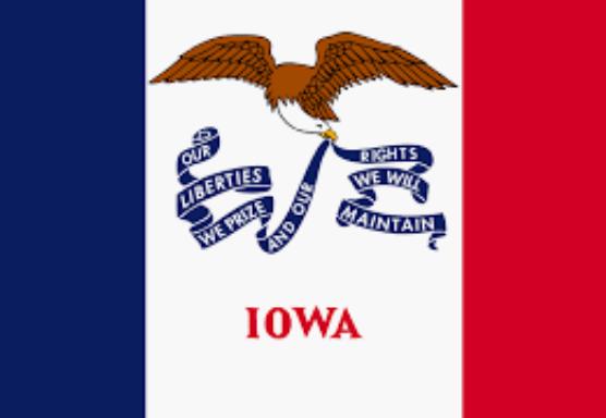 Iowa Online Casinos | Slots | Live Dealers | Fastpay | US | Bitcoin | Best Bonuses