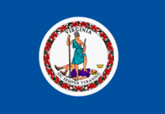 Virginia Online Casinos | Online Slots | Great Bonuses | Gambling Guide | Bitcoin | Secure and Safe Payment Methods | Online Bingo | El Royale Casino